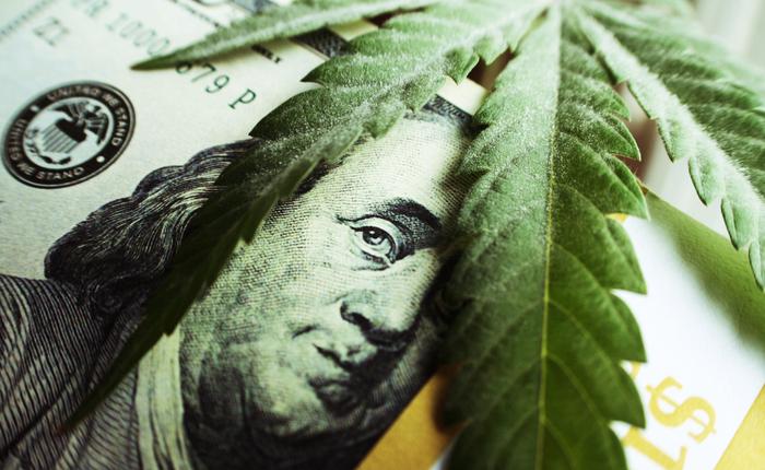 Cannabis Stocks Worldwide Slumped 22 3% Throughout October