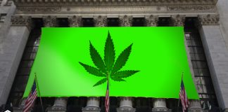 marijuana ipo stocks