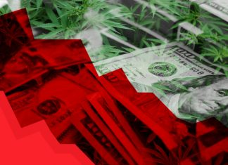 Worst Performing Marijuana Stocks