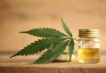 Canada's 2.0 legalization