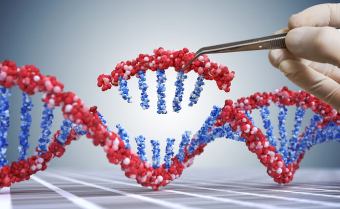 genetically edited babies